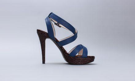 Une chaussure à son pied