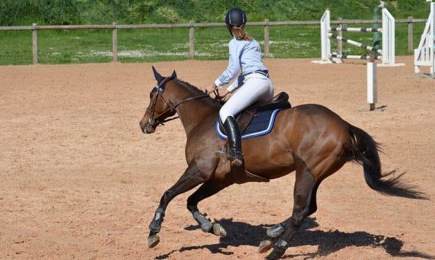 Les raisons d'acheter des bottes en cuir pour l'équitation